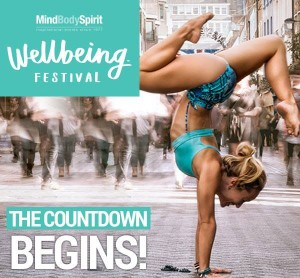 MBS Festival 2016