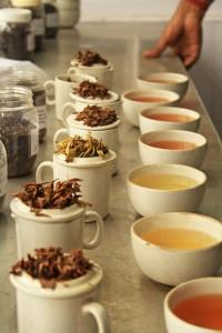 tea_tasting_ready